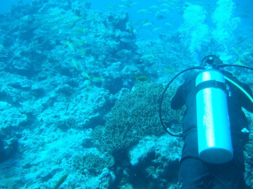 diving_in_guam_pauls
